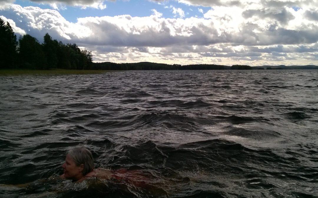 Jämsäläisjärvien kesä